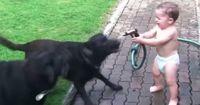 Wasser marsch! Hunde und Kinder flippen aus