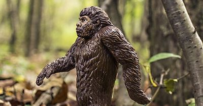 Der Bigfoot hat viele Namen