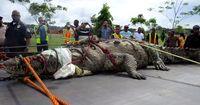 Wer Krokodile mag, wird diese Exemplare lieben