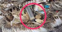 Nachdem ihr das gesehen habt, werft ihr nie wieder achtlos einen Plastikbecher in den Müll ...