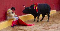 Alvaro Munera ist heute einer der bekanntesten Stierkampf-Gegner ...