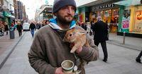 Ein Obdachloser riskiert sein eigenes Leben, um einen Hasen zu retten