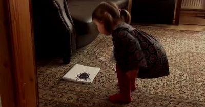 Das kleine Mädchen traut ihren Augen kaum! Ist diese angsteinflößende Spinne nur eine Erscheinung?