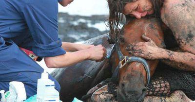 Sie hielt den Kopf ihres Pferdes, damit es nicht weiter sinken konnte