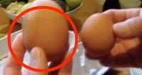 Was sich in diesem Ei versteckt, kommt unter 2 Millionen Eiern nur einmal vor.