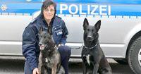 Er ist wachsam, schnell und konzentriert: Der Polizeihund
