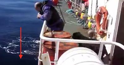 Was russische Fischer da aus dem Wasser ziehen ist KEIN Fisch