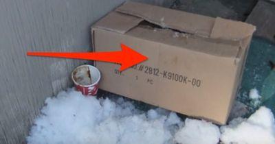 In Kanada findet eine Frau eine Kiste. WAS sie darin findet, versetzt ihr einen Schock!