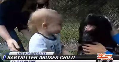 Die Babysitterin schlug ein Baby vor den Augen des Familienhundes - sie hat es bitter bereut