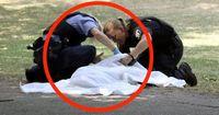 Tagesmeldung: Berliner Polizist erschießt Hund auf offener Straße