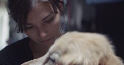 Dieses Video wird jeden Hundebesitzer zu Tränen rühren