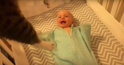 Dieses Baby sieht zum ersten mal eine Katze