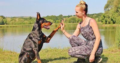 Der Mensch ist nicht perfekt: Was wir von Hunden noch lernen können und auch müssen!