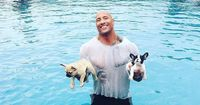 Dwayne The Rock Johnson rettet Welpen vor dem Ertrinken