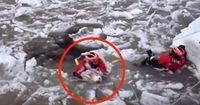 Dieser Hund kämpft im eisigen Wasser um sein Leben.