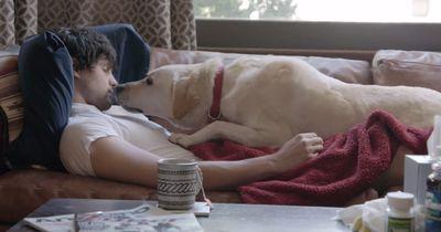 Diese Entscheidung veränderte sein ganzes Leben: Er kam nicht mehr zurück zu seinem Hund!