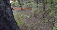 Allein bei einem Fahrradausflug im Wald traf er auf ein Tonnen-schweres Raubtier...