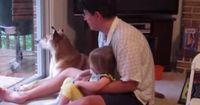 Das passiert, wenn Baby und Daddy ihrem Hund das Heulen beibringen.