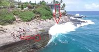 HEFTIG: Dieser Hund wird von einer RIESIGEN Welle erfasst und mitgerissen!