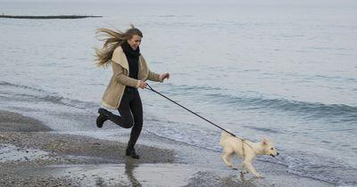10 Gründe, warum du mit deinem Hund joggen gehen solltest!