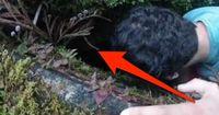 Sie hören ein Wimmern aus dieser Felsspalte & müssen das entdecken!
