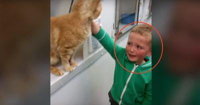Dieser kleine Junge erlebt eine unglaubliche Überraschung