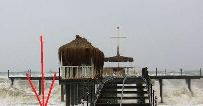 Unheimliche See-Kreatur nach Tsunami entdeckt