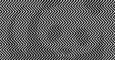 Kannst du es sehen? 9 von 10 Menschen können es NICHT sehen!