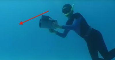 Er entging einer Hai-Attacke...
