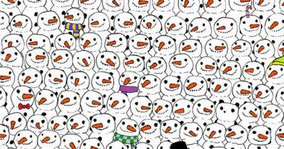 Hier versteckt sich ein PANDA! Kaum jemand findet ihn, und Du?