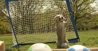 Vielleicht ist er gar kein Hund - sondern Manuel Neuer!