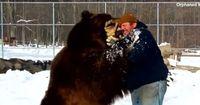 Um sich diesem Tier zu nähern, benötigt manch einer Mut...