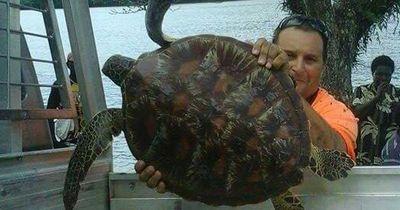 Dieser Mann kauft Schildkröten vom Essens-Markt