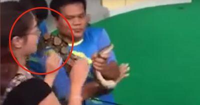 Eine Schlange beißt einer Frau ins Gesicht!