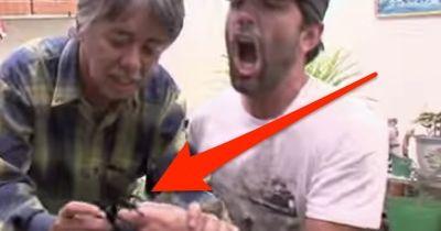 Dieser Mann hat eine gewaltige Tarantel auf dem Arm