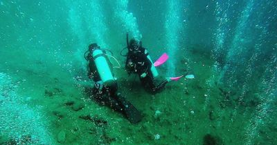 Wissenschaftler untersuchten gerade einen Vulkan unter Wasser, als sie DAS fanden!