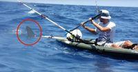 Dieser Kayak-Fahrer überlebt eine ATTACKE