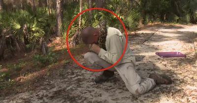 Er nahm eine Python in die Hand und kurz darauf blutet sein ganzes Gesicht