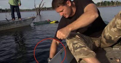 Und plötzlich biss er zu: So scharf sind die Zähne eines schwarzen Piranhas!