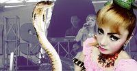 Schrecklich: Sängerin stirbt durch Kobrabiss auf der Bühne...