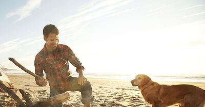 Wenn du deinen Hund WIRKLICH liebst, solltest du DAS sein lassen...!