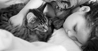 So half diese Katze einem kleinen Mädchen mit Autismus