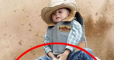 MUTTON BUSTING: Der heftige Kinder-Rodeo-Trend