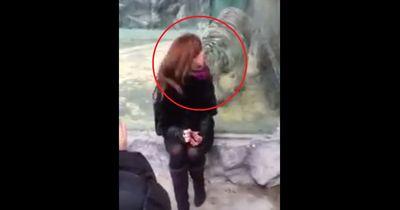 Sie provozierte diesen Tiger
