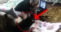 Als der Vater sein Baby schlägt, denkt die Katze nicht 2-mal nach! Sie attackiert den Angreifer!