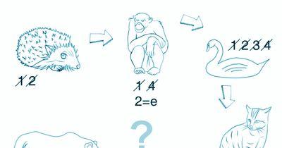 Buchstabenrätsel: Welches Tier suchen wir?