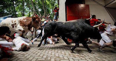 Heftiger Protest gegen Stierlauf in Pamplona!