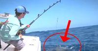 Monster fischen an der Ostküste Floridas