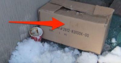 WAS diese Kanadierin in einer Kiste findet, versetzt ihr einen Schock!