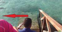 Das freundlichste Monster der Malediven